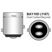 bay15d_1157_bases